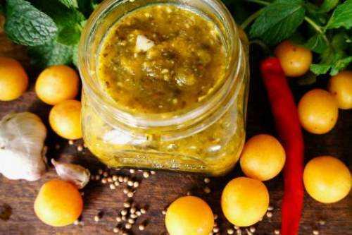 Ткемали из алычи - вкусные рецепты соуса