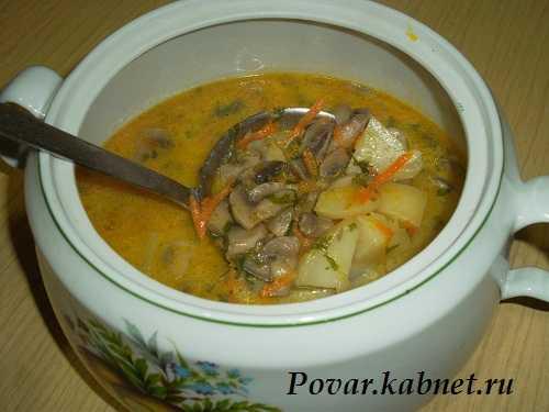 Куриный суп с шампиньонами — пошаговый рецепт с фото