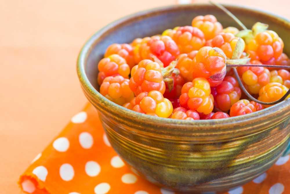 Как заваривать плодоножки морошки от кашля