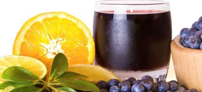 Голубика протертая с сахаром на зиму. рецепты из голубики. голубика — лучшие простые рецепты с пошаговыми фото, как из ягод приготовить на зиму вкусные заготовки