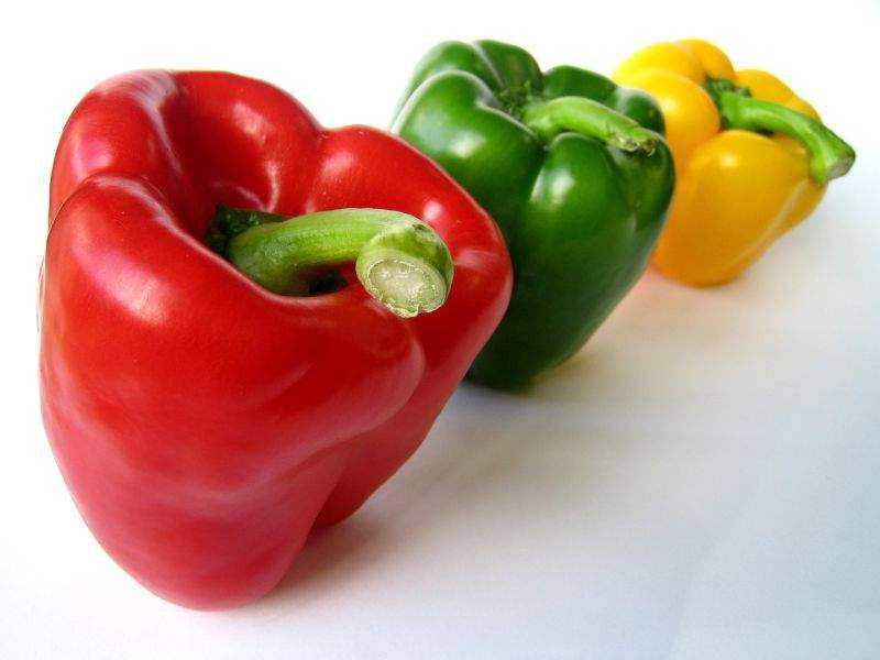 Как сохранить горький перец на зиму в домашних условиях в холодильнике в свежем виде? русский фермер