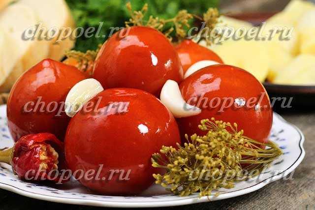Тонкости заготовки на зиму квашеных зеленых помидоров. вкусные и быстрые рецепты