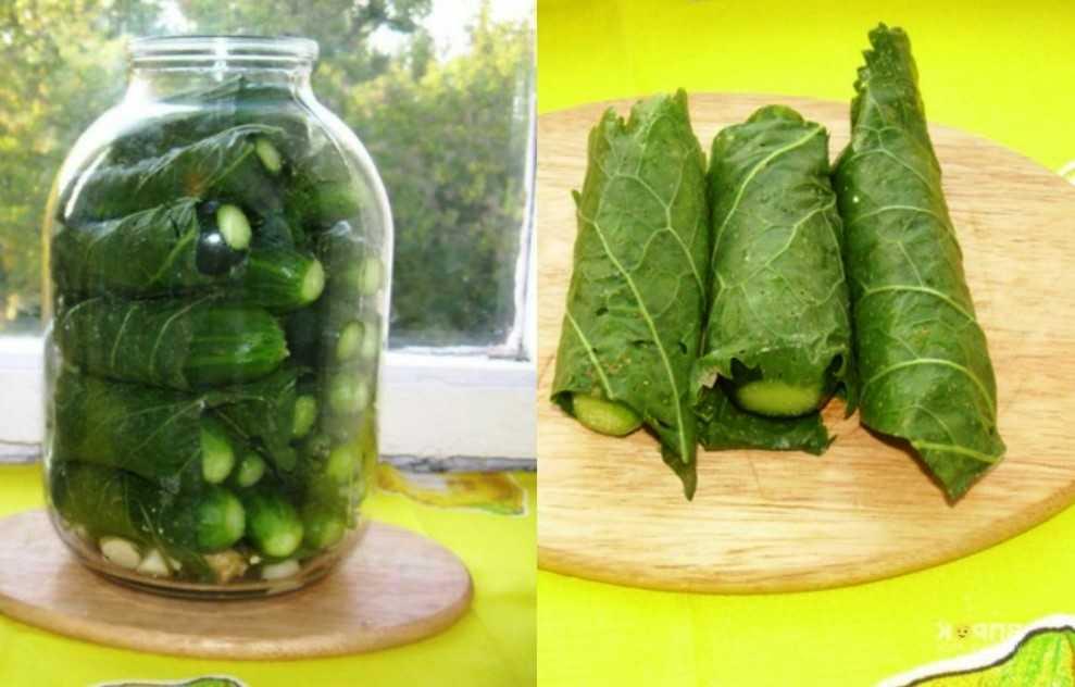 Огурцы в листьях хрена: классический вариант, с добавлением веточек смородины, без уксуса. Требование к овощам и банкам. Срок годности заготовки.