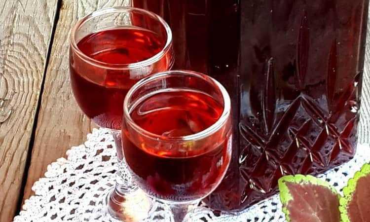 Ликер из красной смородины - лучшие рецепты от gemrestoran.ru