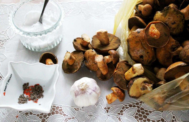 Маринованные моховики, рецепты приготовления на зиму