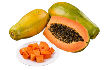 Польза и вред папайи для организма (19 фото): полезные свойства и калорийность сушеного фрукта и его листьев, противопоказания к употреблению цукатов для женщин