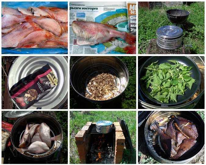 Копчёный лосось: рецепты приготовления