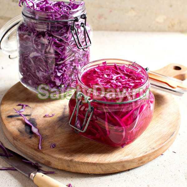 Как солить краснокочанную капусту. рецепты заготовок краснокочанной капусты на зиму