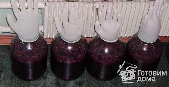 Домашнее вино из винограда: простые рецепты приготовления +фото. Секреты приготовления.