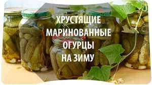 Огурцы с горчицей на зиму: самые вкусные рецепты