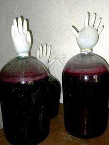 Как сделать домашнее вино из терна и лучший рецепт напитка из винограда изабелла