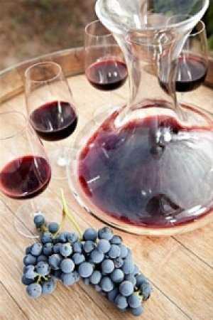 Как приготовить вино из винограда изабелла в домашних условиях?
