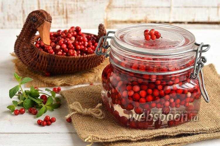 Брусника, протертая с сахаром на зиму без варки: 3 рецепта
