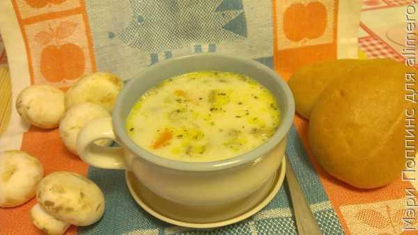 Суп из шампиньонов: рецепты с фото