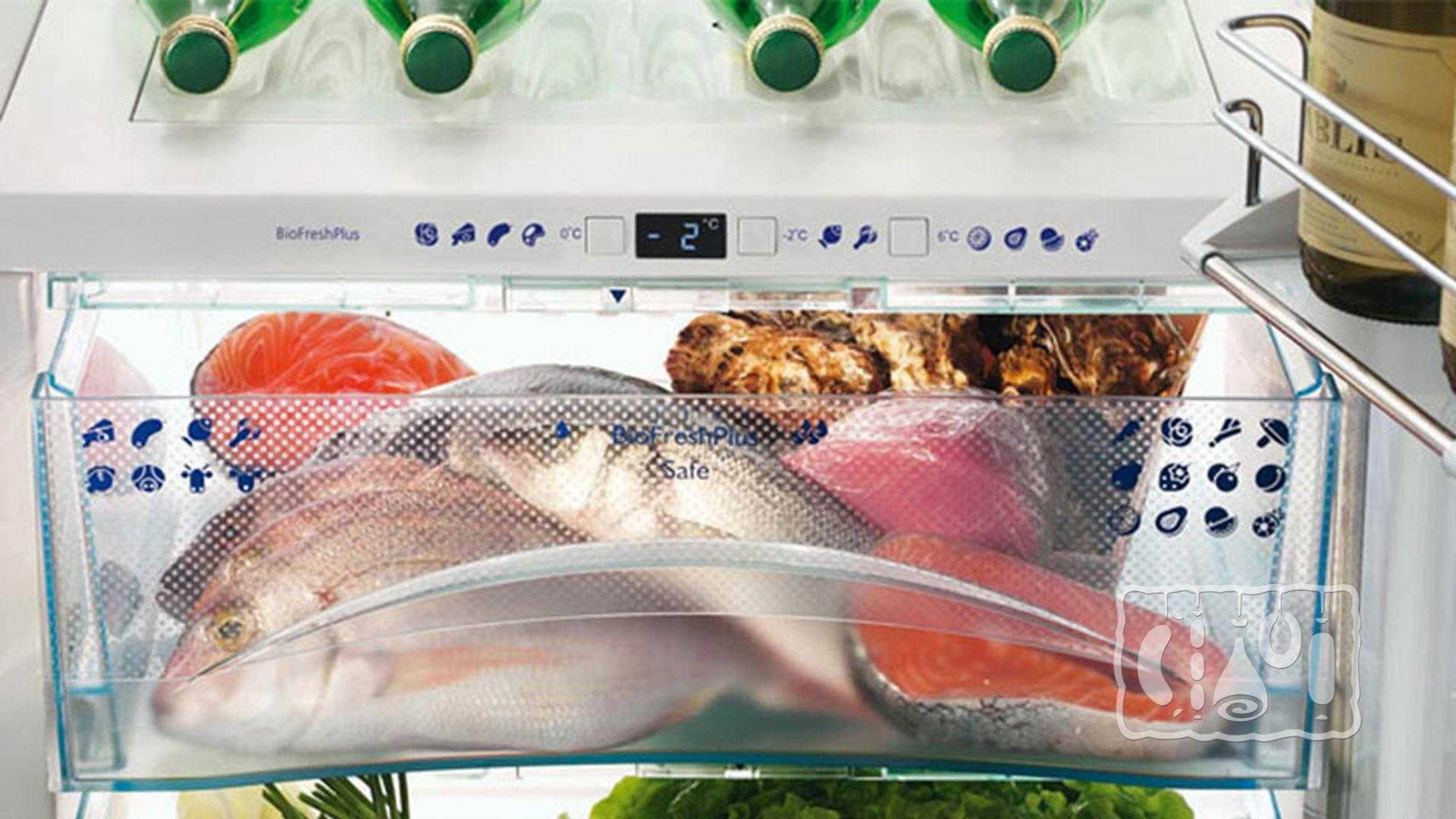 Форель холодного копчения: состав, калорийность, польза и вред. Выбор и подготовка рыбы, процесс обработки, правила хранения, отзывы.