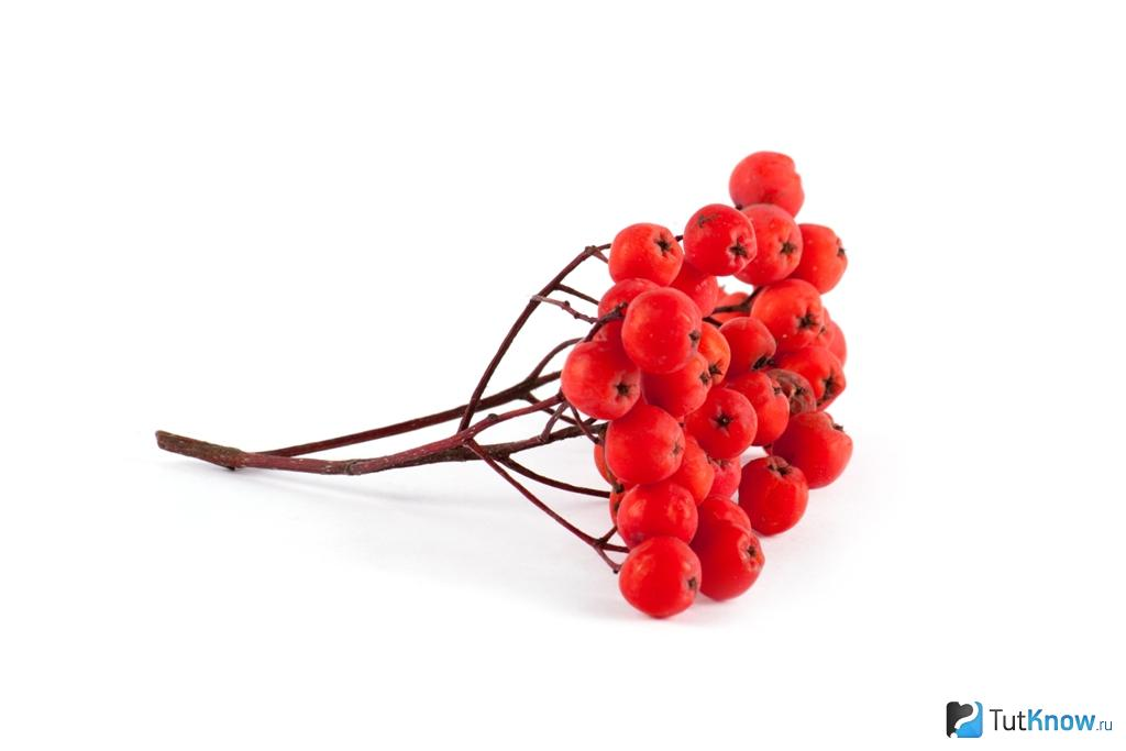 Варенье из рябины красной: рецепт простой и вкусный