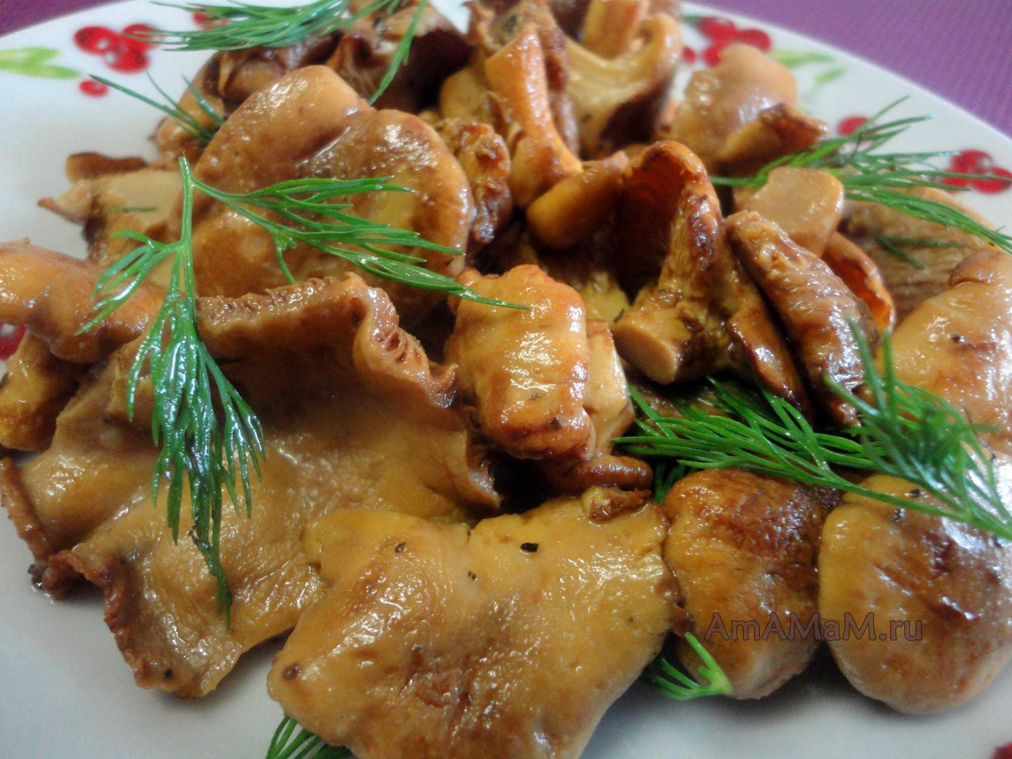 Рецепты с грибами лисичками: приготовление с картошкой на сковороде. как правильно их приготовить