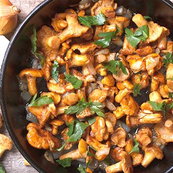 Курица в сметанном соусе – 10 вкусных рецептов