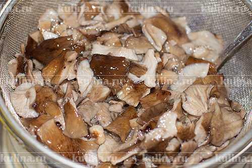 Жульен с грибами и курицей: рецепт классический в духовке со сливками