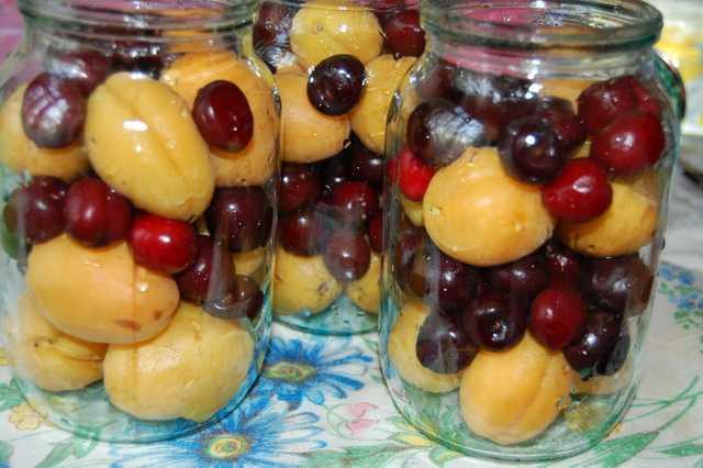 Компот из ягод на зиму - рецепты ассорти, с фруктами, апельсином и концентрированного напитка