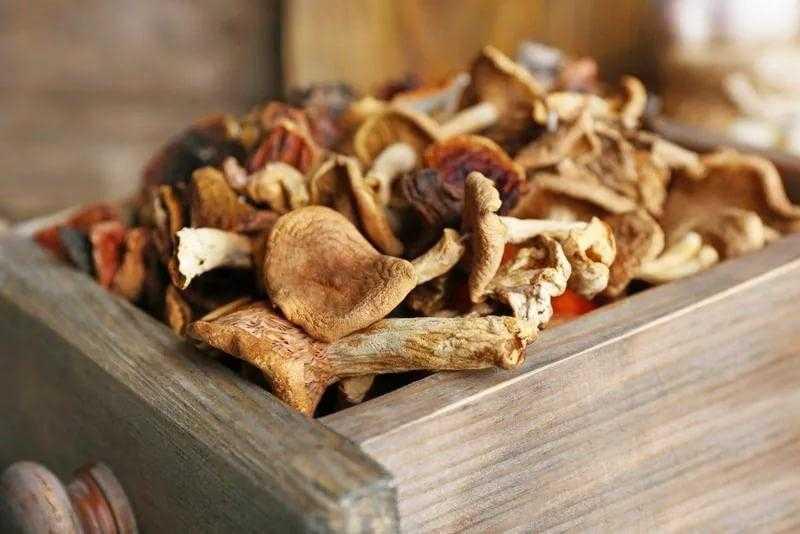 Сколько хранятся сушеные грибы: допустимые сроки.