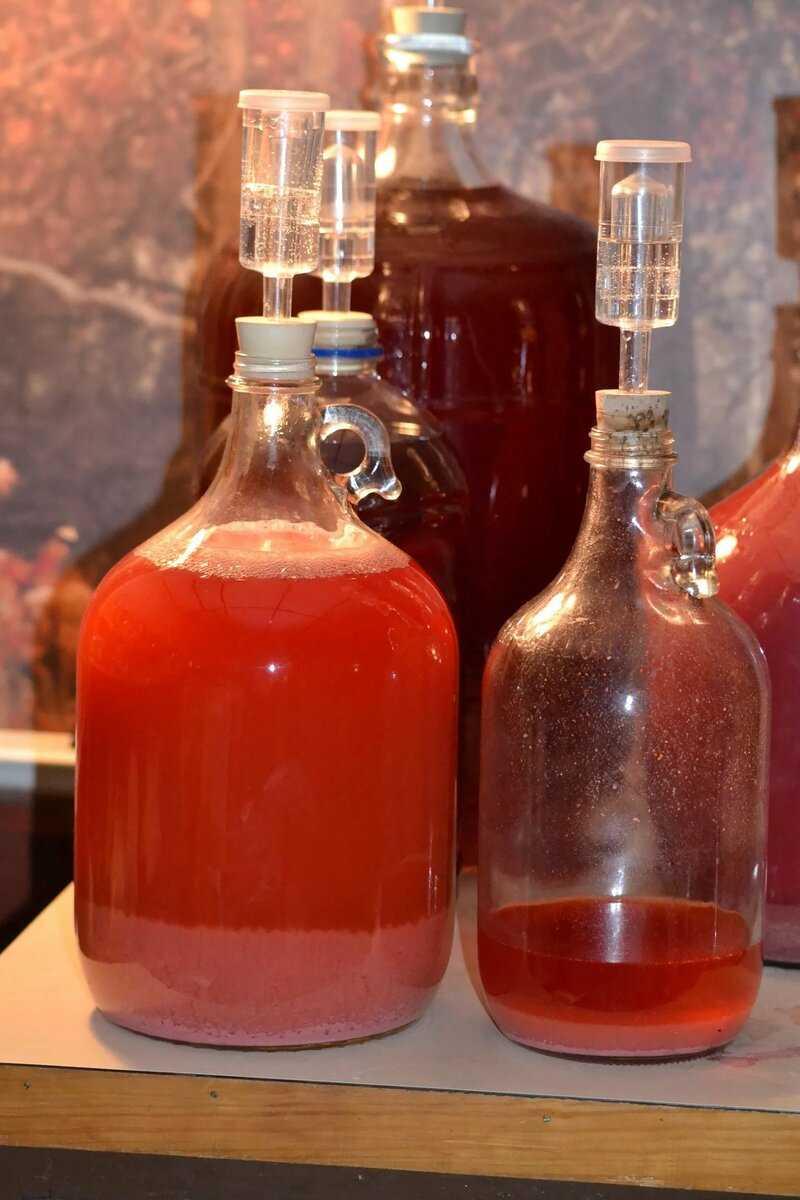Виноградное вино в домашних условиях: простой рецепт с фото пошагово