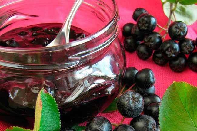 Изюм из черноплодной рябины в домашних условиях - популярно о здоровье