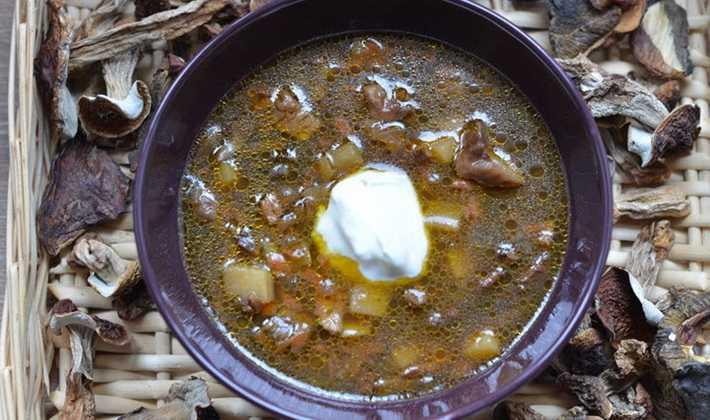 Суп с грибами - как приготовить из свежих, замороженных или сушенных по пошаговым рецептам с фото