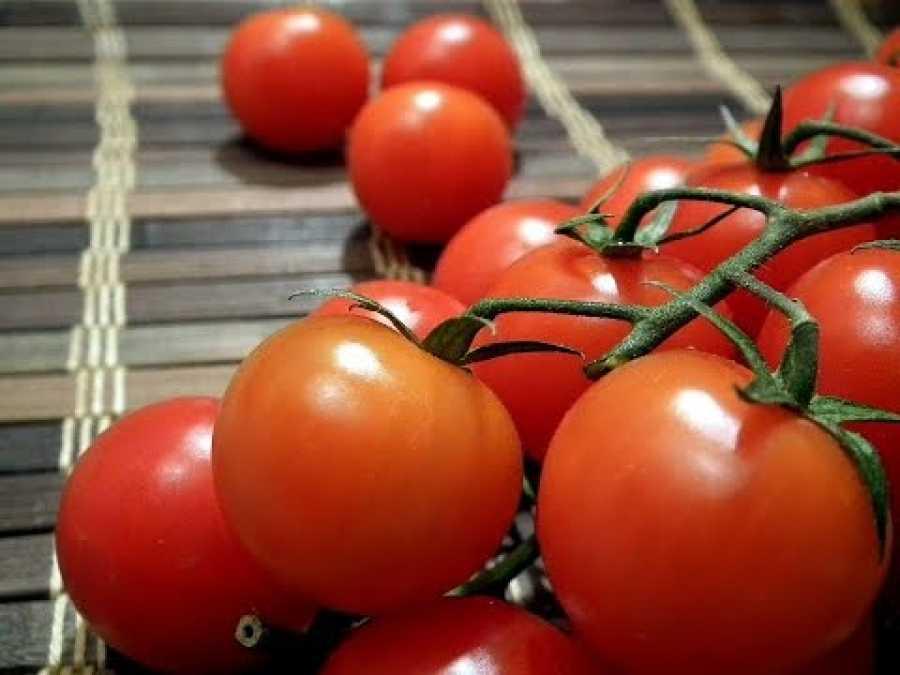 Как заморозить помидоры на зиму в морозилке + способы заморозки томатов