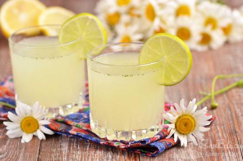Базилик лимонный: аромат, применение, полезные свойства