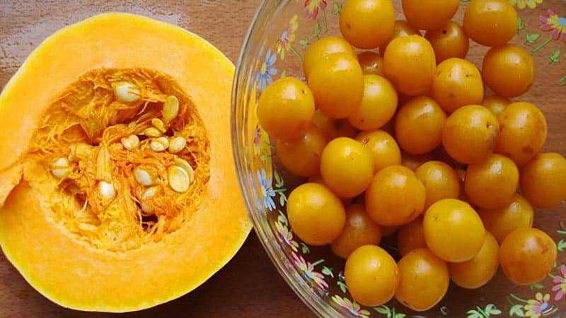 Как сушить тыкву в электросушилке: инструкция по подготовке овоща, процессу его сушки и употреблению готового продукта