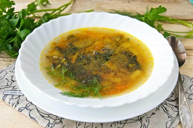 Суп из замороженных грибов — опят, белых, маслят: рецепт приготовления классический, со сметаной, перловкой, рисом, манкой, овощами, плавленым сыром, фасолью, галушками, кулеш, пюре, советы по приготовлению