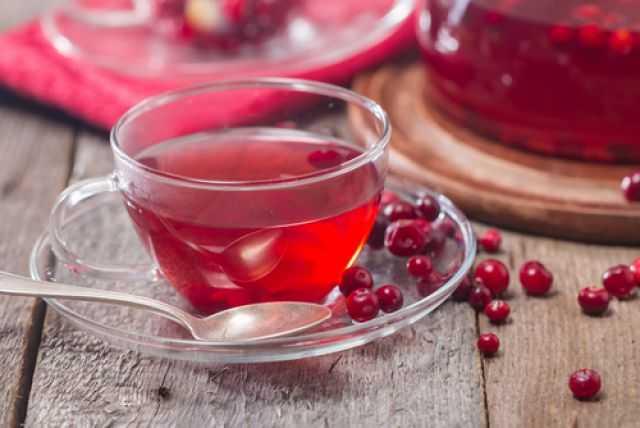 Чай с клюквой — польза и вред ягодного напитка, лучшие рецепты