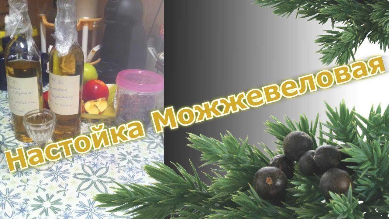 Рецепты приготовления настоек с можжевеловыми ягодами на спирту