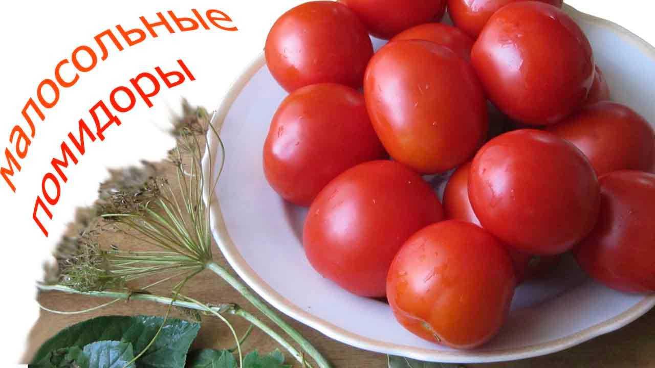 Малосольные помидоры красные или зеленые - как быстро приготовить в домашних условиях по рецептам с фото