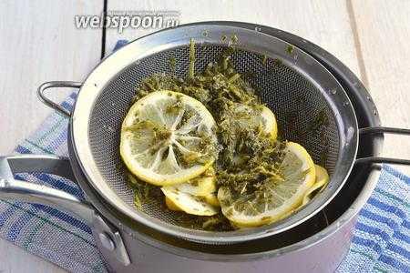 Как приготовить тархун — рецепт лимонада в домашних условиях