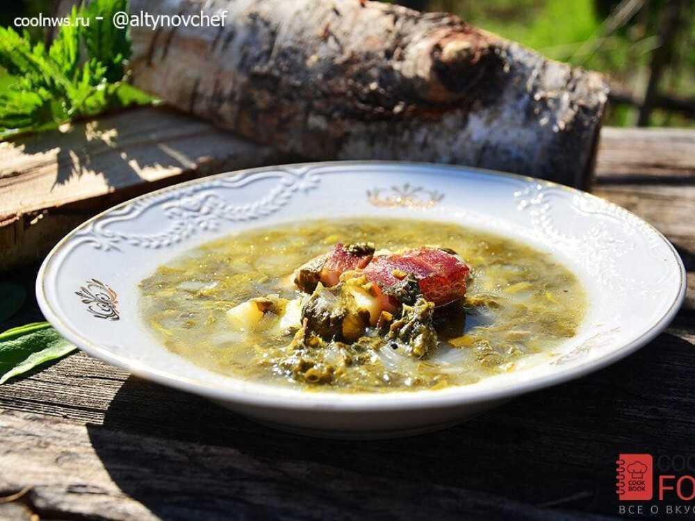 Щавелевый суп с яйцом - классические пошаговые рецепты супа из щавеля