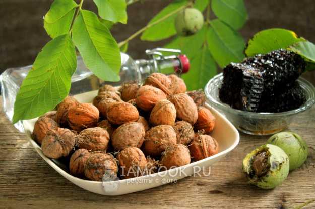 Настойка на грецких орехах — применение и рецепты