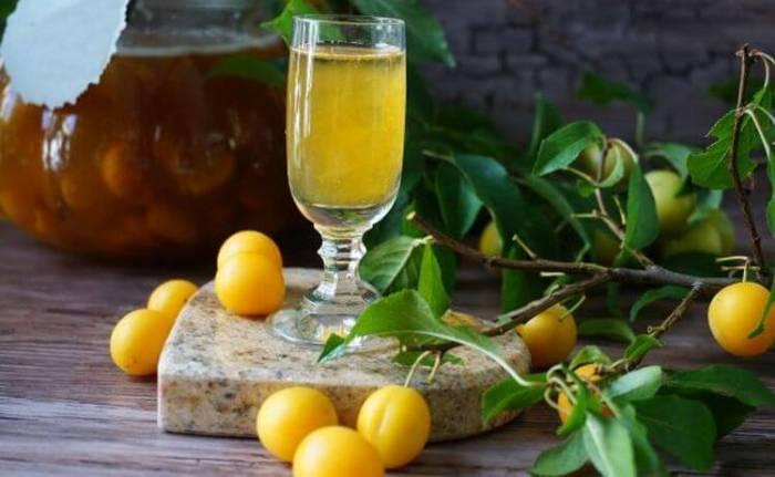 Вино из алычи: 3 рецепта в домашних условиях