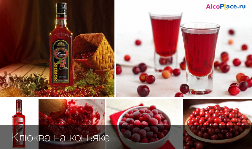 Настойка клюквы на коньяке ⋆ рецепты домашнего алкоголя