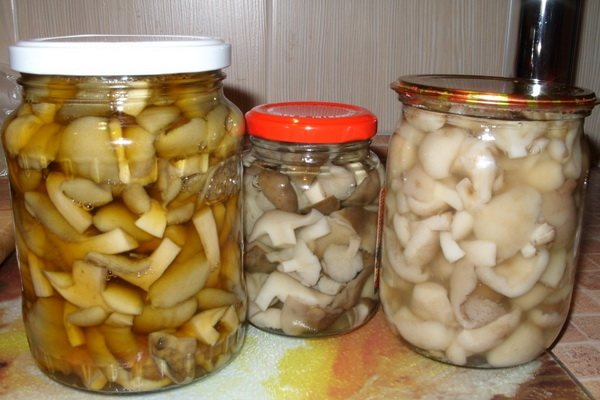 Маринад для грибов — как сделать рассол для засолки на зиму?