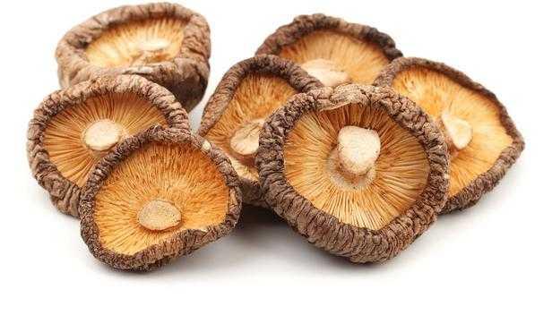 Как и сколько варить грибы перед заморозкой на зиму