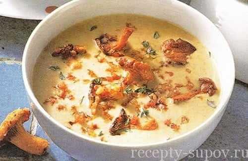 Супы из лисичек, 27 рецептов, фото-рецепты / готовим.ру
