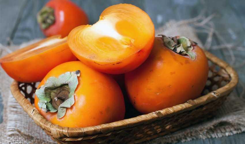 Свежие или замороженные: какие фрукты, овощи иягоды полезнее зимой. новости общества