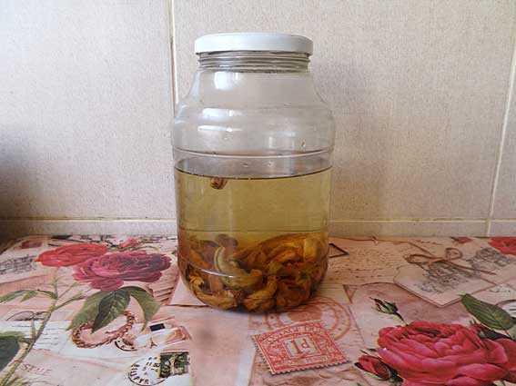 Настойки на груше: 7 простых рецепта на самогоне, водке и джине