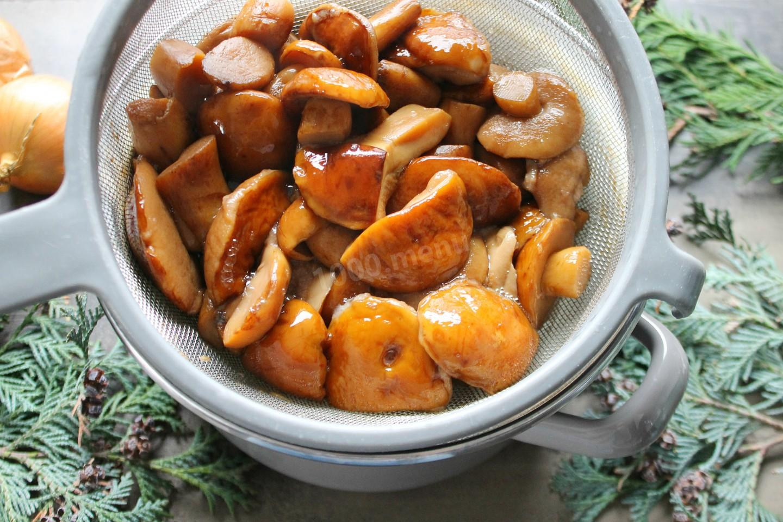Как пожарить маслята на сковороде. 5 рецептов вкусных жареных маслят