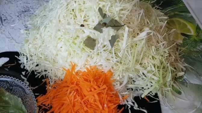 Квашеная капуста с морковью: 10 разнообразных рецептов