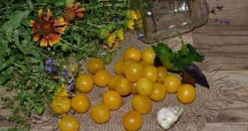 Что приготовить из желтой алычи. алыча на зиму - рецепты сладкой и пикантной консервации