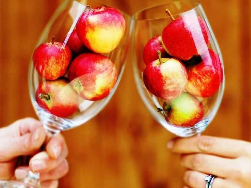 Вино из яблок в домашних условиях – самостоятельное приготовление