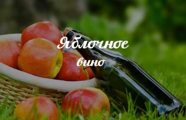 Производство и изготовление сухих и игристых вин